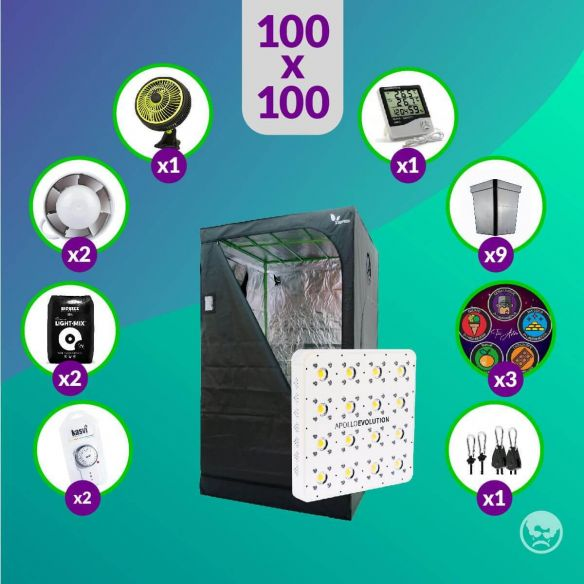 Pack LED Indoor 100X100 Apollo Evo 16 - 480W Full