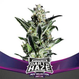BSF Seeds Darth Haze Fem X2