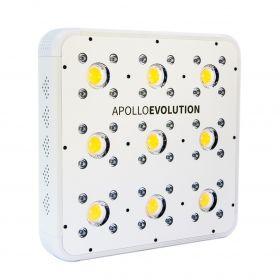 Delight Apollo Evolution...