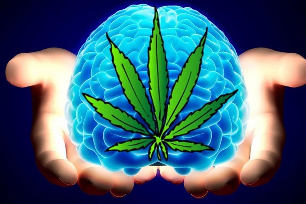 consumo de cannabis