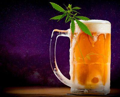 chelas y cannabis
